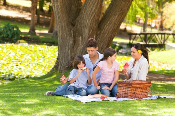 family-picnic-at-the-park