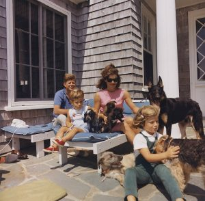 Top Dog Breeds For Growing Families