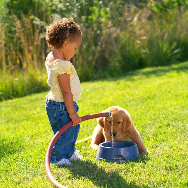 Teaching Your Children The Responsibility Of Pets