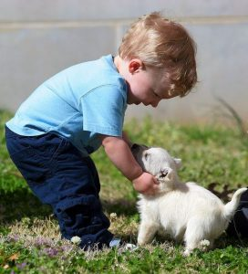 kid-with-a-puppy