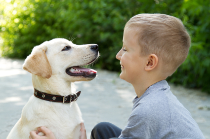 Tips For Teaching Your Child How To Care For A Pet Dog Or Puppy